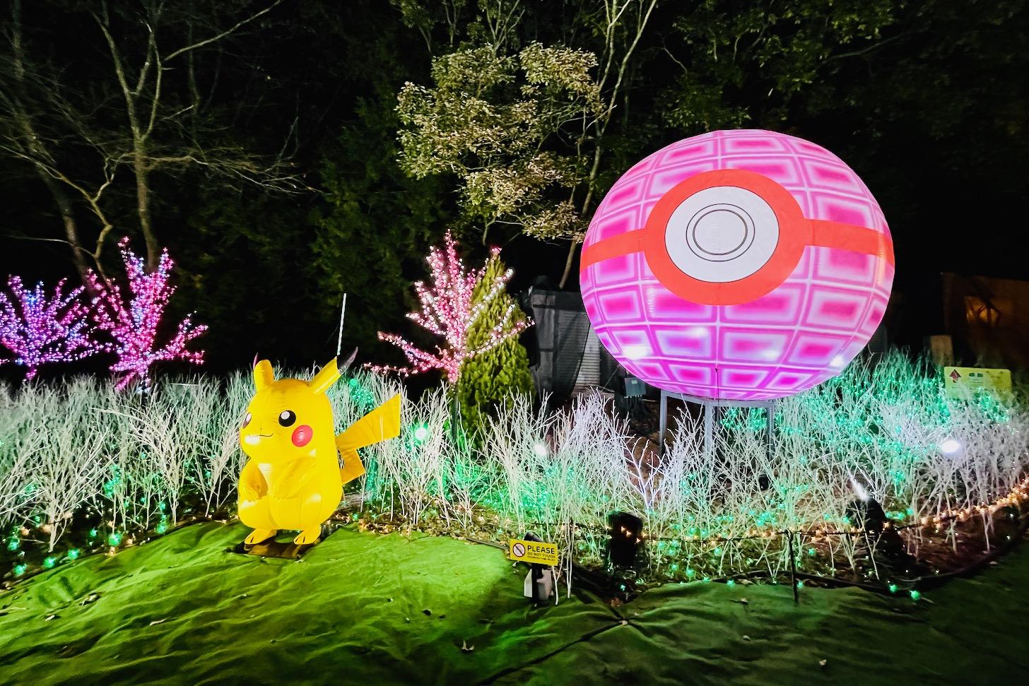 ピカチュウの光の森のピカチュウとモンスターボール