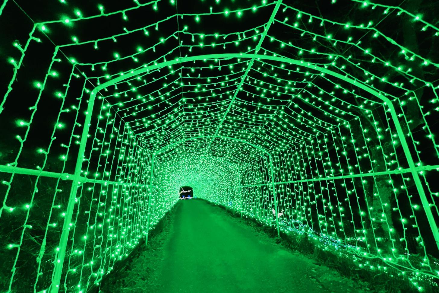 さがみ湖イルミリオン「光の大トンネル」