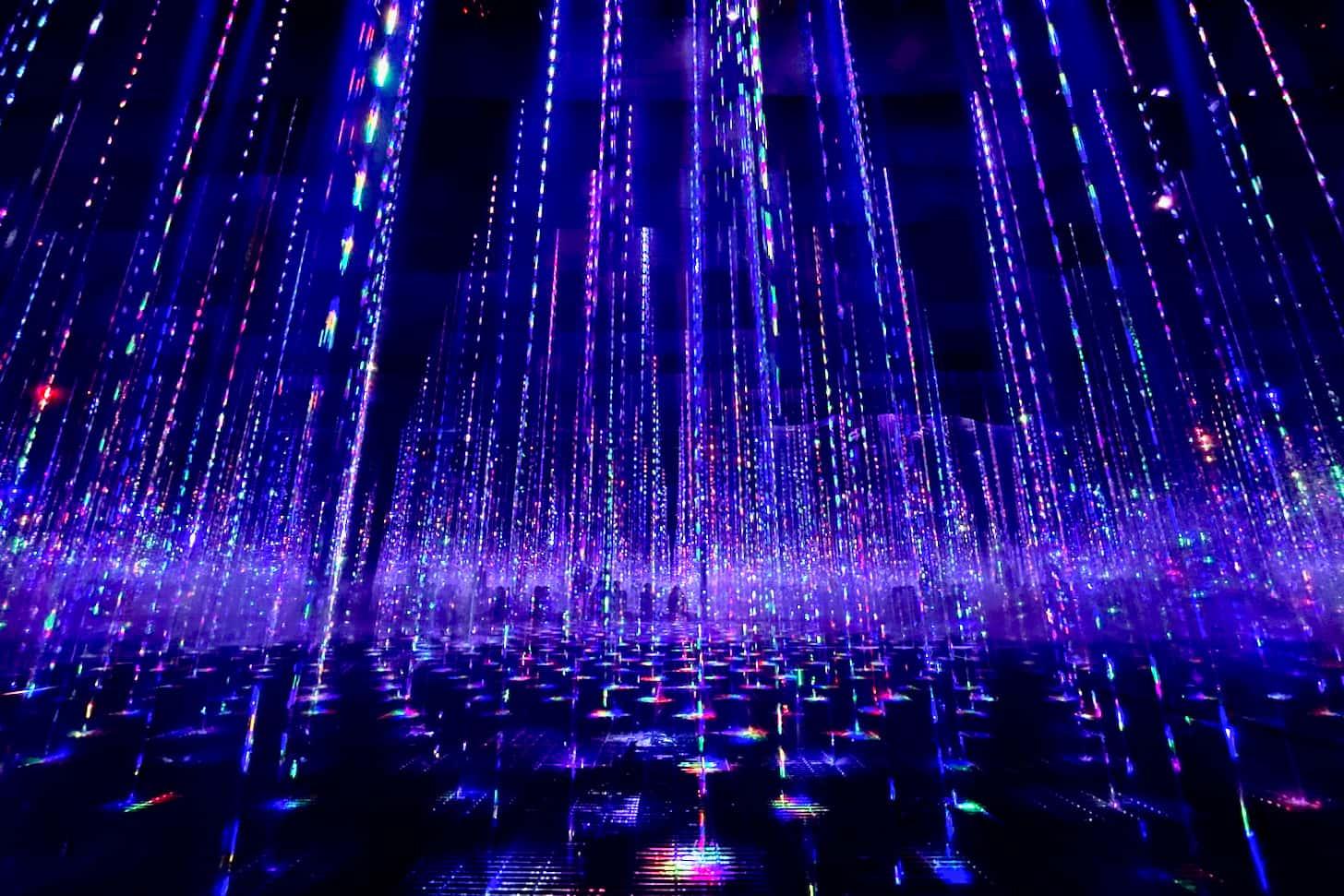 生命は結晶化した儚い光 / Ephemeral Solidified Light